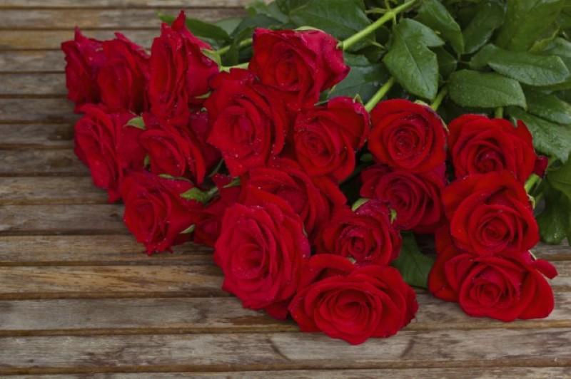 vrtnice (Custom)